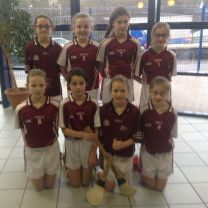 Hurling and Camogie Finalists!