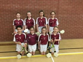 Hurling and Camogie Succes in Co.Tyrone Finals!