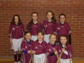 Camogie Team 2015
